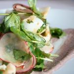 Baby Calamari Salad