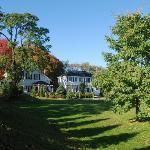 Summertime at the Great Tree Inn