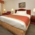 Best Western Plus Burlington Inn & Suites King Size Room