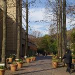 正門を入って真っ直ぐ芹ヶ谷公園方面を見た庭園の光景です。