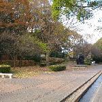 建物の入口前から見た芹ヶ谷公園方面の景観です。