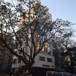 Photo of Sai Leela Hotel