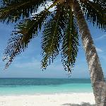 Cayo Levisa - beach