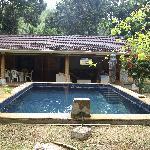 la piscina davanti a villa aranci