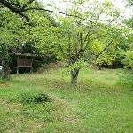 ようやく本丸跡に辿り着きました。この奥には「勝日高守神社」があります。