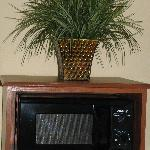 Microwave in every room