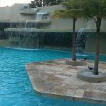 Pool area nov/2010