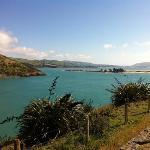 beautiful Otago Peninsula