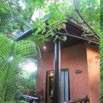 Terrasse et entrée bungalow