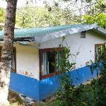 Lovely cabin