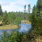 Beautiful Metolius River