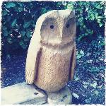 Carved owl bench at the Tree Cathedral