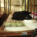My dorm bed