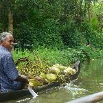 cerca de la verdadera vida diaria en los backwaters