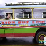 The Zion Bus
