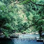 The lower half of Tamaraw Falls.