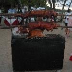 Roasted Pig