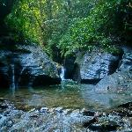 Beginning of Guanapo Gorge