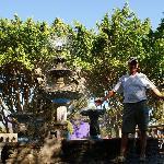 Juayua fountain town square