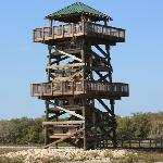 The Observation Tower at Robinson Preserve