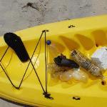 Quelques déchets ramassés dans l'eau