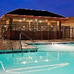 Outdoor Pool  PJ's Tropical bar