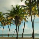 Enjoy beachfront access to the beautiful Lucia Beach in our tropical Yabucoa hotel!