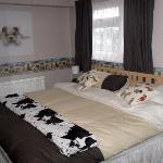 K9 Room
