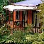 Kanuka Ridge tree top verandahs
