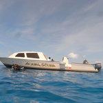 43 ft Dive Boat