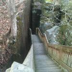 Rim Rock Trail in Shawnee National Forest