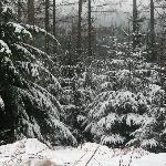 Winter In Keswick
