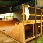 iguana's mini ramp