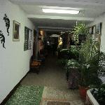 in hotel hallway
