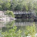 Robinson Preserve is a beautiful and relaxing place to visit