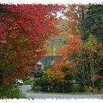 Entouré de couleurs d'automne
