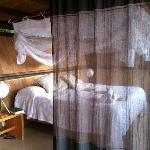 V-House bed