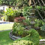 Los Artistas garden