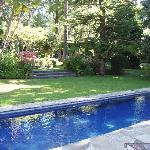 Pool-Los Artistas