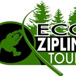 Eco Zipline Tours