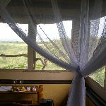 Even While relaxing on in your  room, you won't miss any animals in the rift valley