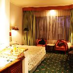 Room of the hotel