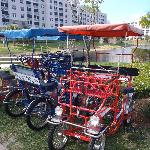 Bikes for Four People for Rent