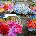 寺院入り口で売っている生花