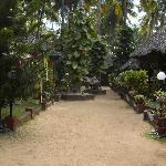 Photo of Kerala Bamboo House