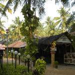 Foto de Kerala Bamboo House