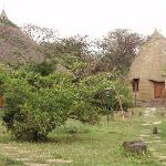 Photo of Negash Lodge