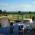 Tea, Cake, wonderful views at Merkins Farm