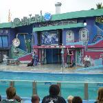 Show de los lobos marinos