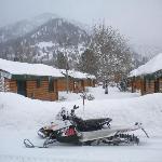 My sled